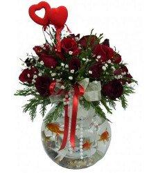 Balıklar ve Güller