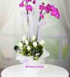 Çift Dal Beyaz Güller