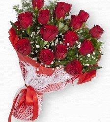 Kırmızı Güller 15 Ad.